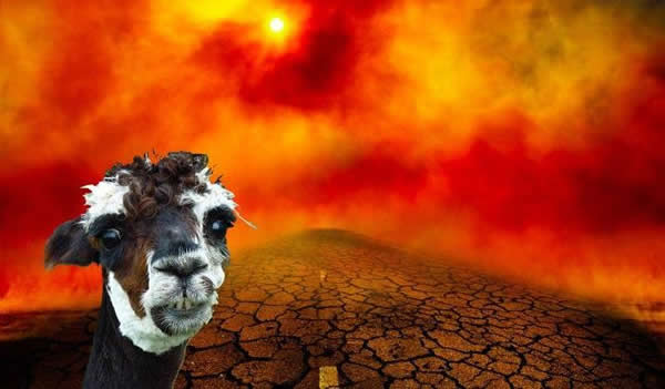 Divertido Meme: Alpacalipsis 2012 + Video Parodia del Fin del Mundo