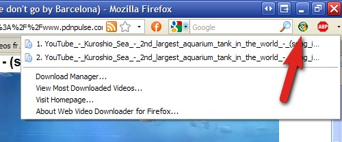 Web Video Downloader, descarga videos y juegos flash